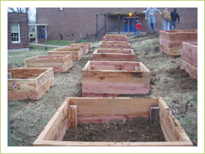 These 17 beds will hold nearly 275 vegetable and herbs from Burpee Home Gardens.