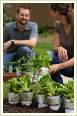 Incorporate gardening into your life