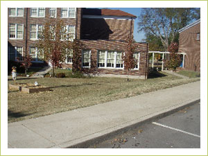 The West End IB World School before the raised garden beds arrive.