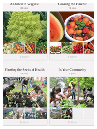 Burpee Gardens is on Pinterest