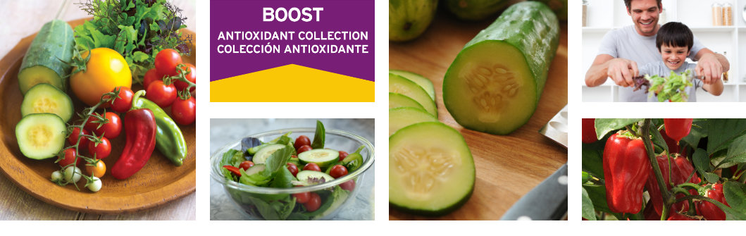 BOOST High-Nutrition Vegetables